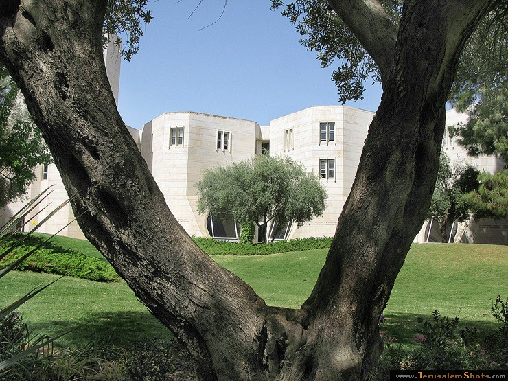 Hebrew University Scopus