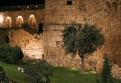 The Tower of David17
