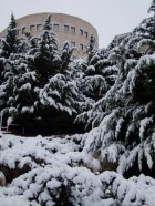 Winter in Jerusalem. January 10, 2013.