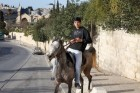 On a horse with IPHONE:)