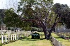 British Military Cemetery, Mt. Scopus